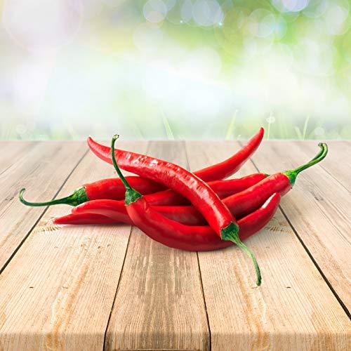 Chili Cayenne 25 x Samen aus Portugal 100% Natürlich ohne Chemische Anzuchthilfe oder Gentechnik