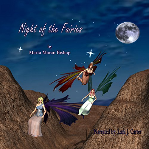 The Night of the Fairies audiobook cover art