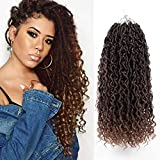 "New Goddess Locs Crochet Hair 14 Inch Curly Faux Locs Crochet Hair For Black Women 5 Packs Pre Looped Ombre Crochet Faux Locs Hair With Curly Hair In Middle and Ends,Synthetic Crochet Braid Hair Extension(14"",T1B/30#)"