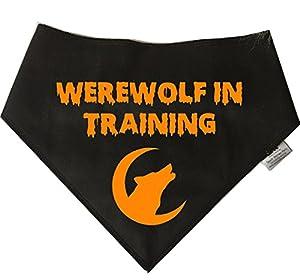 Spoilt Rotten Pets Bandana pour chien Motif Halloween 'Loup-garou en formation'-idéale pour chien déguisement