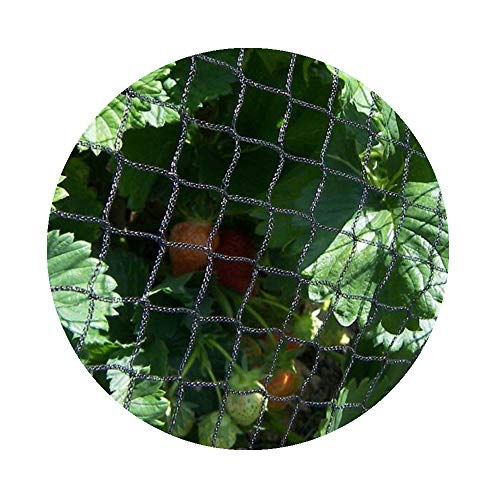 Filet Anti Oiseaux Uikos Filet de Protection pour Bassin de Jardin avec 10 Ancre de Sol et 10 Attaches de c/âble
