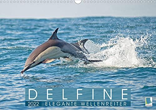 Delfine: Elegante Wellenreiter (Wandkalender 2022 DIN A3 quer)