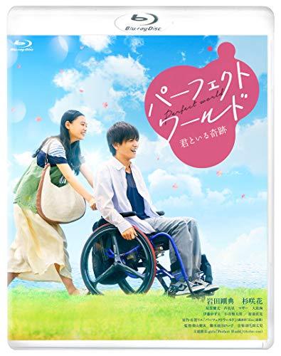 パーフェクトワールド 君といる奇跡 [Blu-ray]