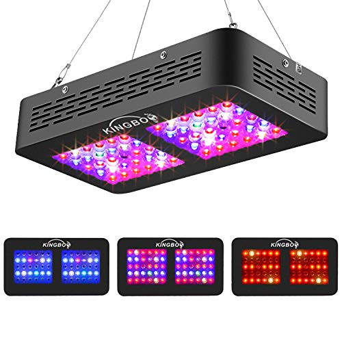 KINGBO Dual Optical Lens-Series 300W LED Grow Light Full Spectrum for Indoor Plants Veg and Bloom (Actual Power 120 watt)