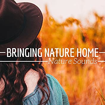 Bringing Nature Home - Nature Sounds Machine for Relaxation & Meditation