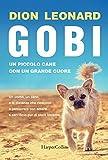 Gobi. Un piccolo cane con un grande cuore