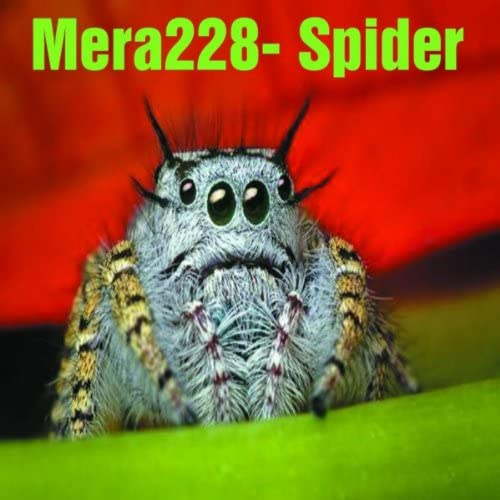 Mera228