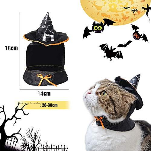 Hey Shop Hut für Hunde und Katzen