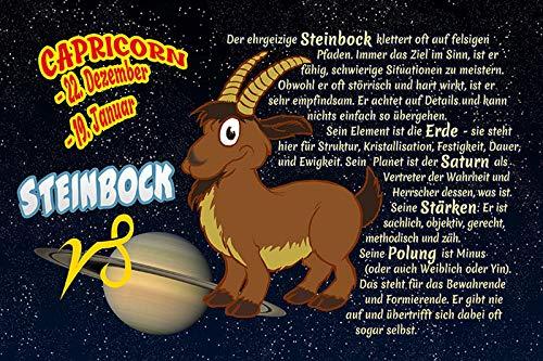 FS Spreuk Steenbok Capricorn Sterrenbeeld Dierencirkel metalen bord 20 x 30 cm