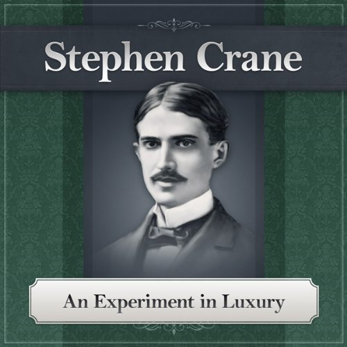 An Experiment in Luxury audiobook cover art