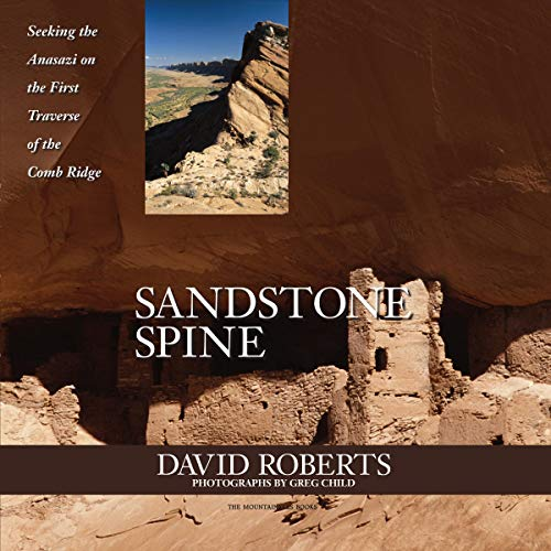 Sandstone Spine Audiobook By David Roberts cover art