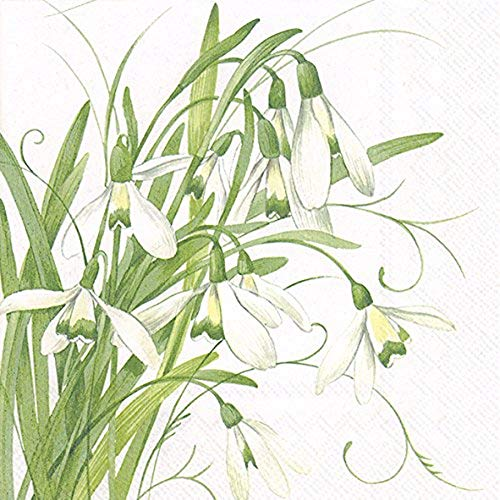Ideal Home Range Ihr Servietten Lunch 33x33cm Early Snowdrops White