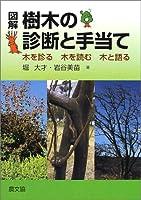 51HE5NKKCEL. SL200  - 樹木医試験 01
