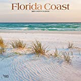 Florida Coast 2020 12 x 12 Inch Monthly Square Wall Calendar with Foil Stamped Cover, USA United States of America Southeast State Nature (English, French and Spanish Edition)