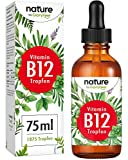 Gloryfeel Liquid Vitamin B12 Vegan Methylcobalamin Plus Adenosylcobalamin (75 ml) 1.000 mcg (High Strength)...