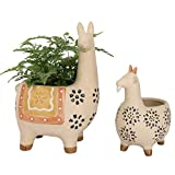 Ceramic Animal Succulent Planter Pots - 6.1 + 4.5 inch Cute Alpaca/Llama & Goat Rough Pottery Unglazed Desktop Flower Plant Pots Indoor, Fall Home Decor Gifts (New Color, Orange)