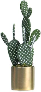 JIAJIANPING Natural Artificial Faux Fake Prickly Pear Cactus,Gold and Silver Flower Pot Luxury Decoration (Color : Gold)