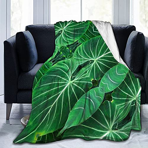 Manta Duradera Mantas de Franela Hojas de Color Verde Tropical Maravillosas Mantas para sofá Cama Sofá Silla Oficina Viaje Camping Manta Decorativa Moderna 60 'x50'