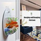 ZGHBZZY Ecosfera para pecera, para colgar en la pared, acuario, jarrón decorativo para maceta, maceta, transparente, cubierta de bolas de polvo, arco de pescado para jardín, hogar, al aire libre