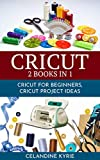 Cricut: A complete guide to make the best use of your Machine, step by step guide with ideas and Projects to put into practice (English Edition)