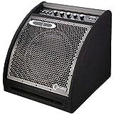 Carlsbro EDA50 Electronic Drum Amplifier
