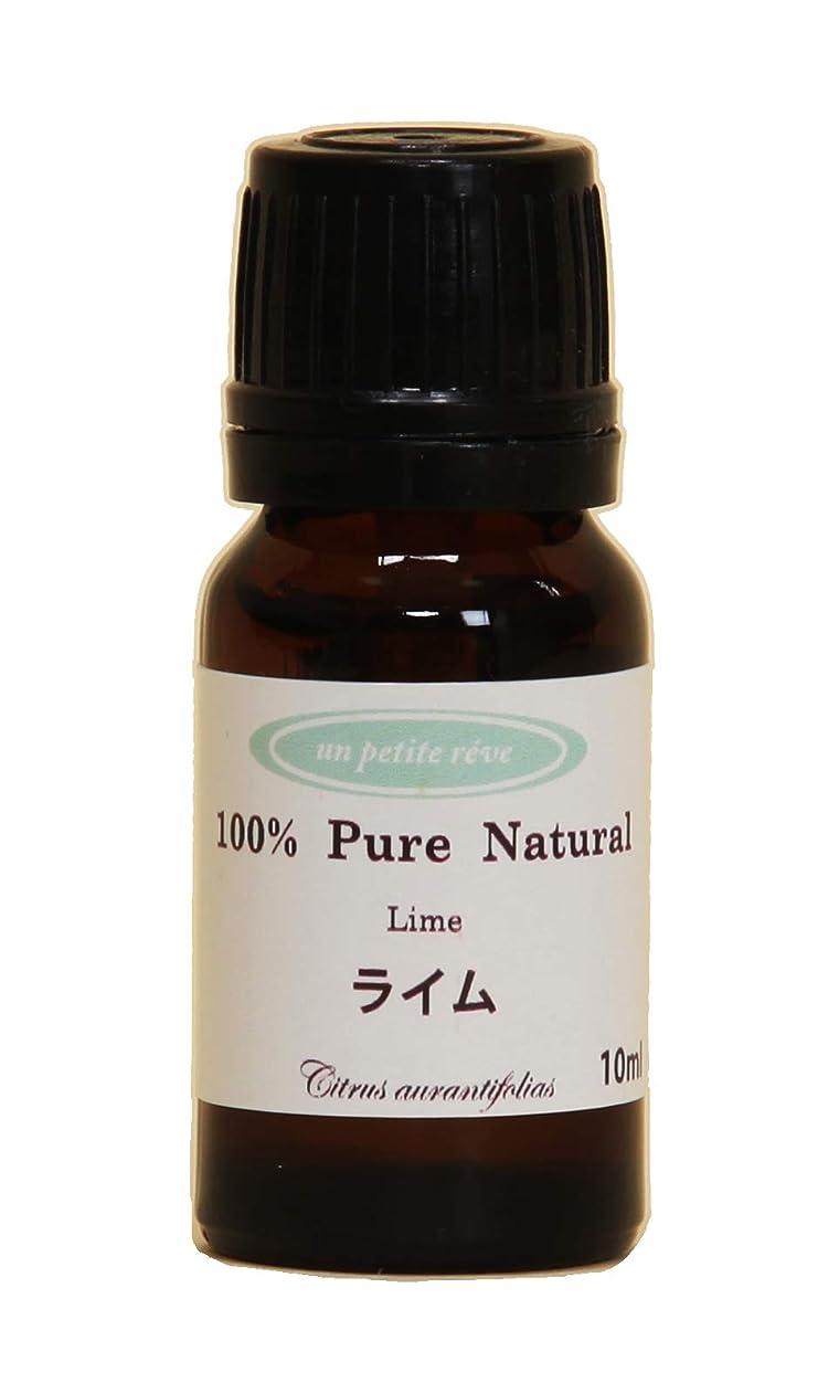 ぐったり洞察力のあるプレーヤーライム10ml 100%天然アロマエッセンシャルオイル(精油)