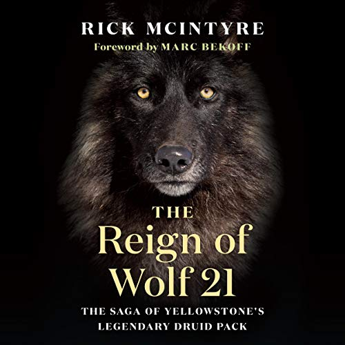 The Reign of Wolf 21: The Saga of Yellowstone's Legendary Druid Pack (The Alpha Wolves of Yellowstone Series, Book 2)