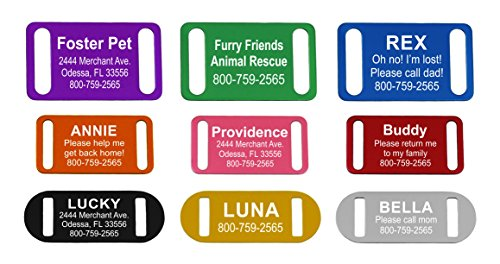 Providence Engraving Slide-On Pet ID Tag | Collar Tag | 3 Sizes & 9 Colors to Choose from (Pink, Small)