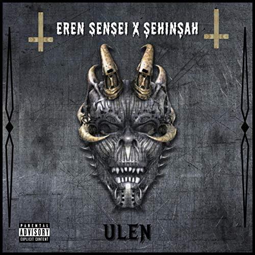 Eren Sensei