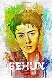 Sehun: Exo Member Color Splatter Art 100 Page 6 x 9' Blank Lined Notebook Kpop Exo-L Merch Journal...