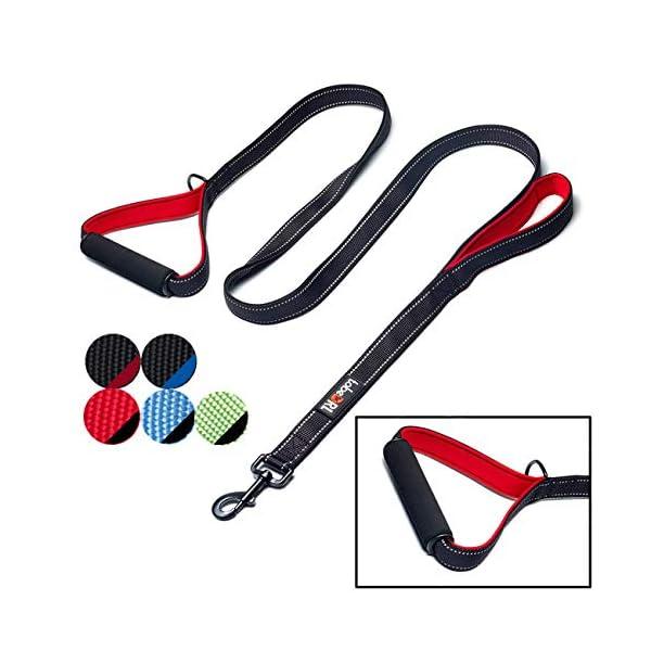tobeDRI Heavy Duty Dog Leash – 2 Padded Handles, 6 feet Long – Dog Training Walking Leashes for Medium Large Dogs