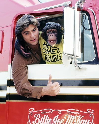 Greg Evigan 16x20 Poster B.J. and the Bear Monkey in Truck