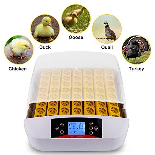 Brutmaschine Vollautomatisch Inkubator 56 Eier, Brutautomat Vollautomatisch Brutapparat Brutkasten für Hühner, Bruteier Hatcher mit LED Temperaturanzeige, Temperaturfühler und Feuchtigkeitsregulier