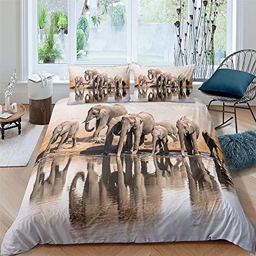 Zqylg Trendy Bedding - Juego de cama con diseño de elefante, elefante y trompas, multicolor, safari, africano, animales salvajes, funda nórdica de 135 cm x 200 cm, poliéster y algodón (04,200 x 200)