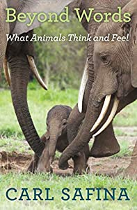 Read online beyond words what animals think and feel by carl safina get beyond words what animals think and feel by carl safina ebook fandeluxe Choice Image
