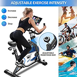 LABGREY Indoor Cycling Bike Stationary, Silent Belt Drive Exercise Bikes For Home Cardio & Resistance Training Workout with LCD Monitor, Comfy Seat, iPad Holder