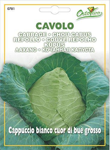 Hortus 22CVC0781 Maxi Busta Ortovivo Cavolo Cappuccio Bianco Cuor di Bue Grosso, 12x0.2x16.5 cm