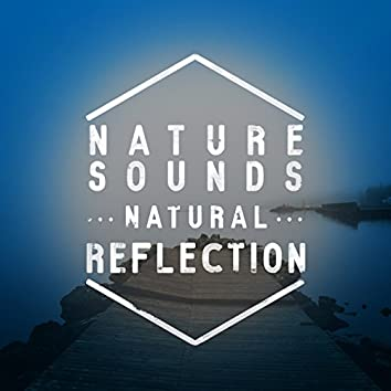 Nature Sounds: Natural Relaxation