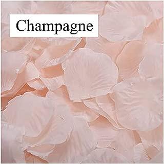Campsis 1000 Pcs Artificial Silk Rose Fake Petals Flowers Flower Girl Scatter Petals for Romantic Wedding Aisle Centerpieces Table Home Decorations (Champagne)