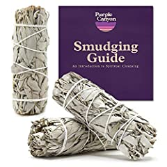 💨 WHITE SAGE BUNDLES by Purple Canyon are perfect for cleansing rituals, blessing, spiritual ceremonies, and for banishing negative energy in homes, offices, yoga studios, and more. Makes a great housewarming gift! ♻️ SUSTAINABLY SOURCED: Our sage sm...