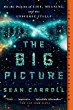 The Big Picture: On the Origins of Life, Meaning,...