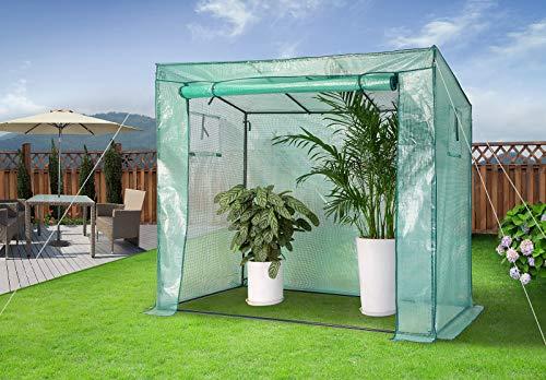 Gardebruk Foliengewächshaus 1,6m² aufrollbare Tür Treibhaus Tomatenhaus Pflanzenhaus Anzucht 200x173x80cm