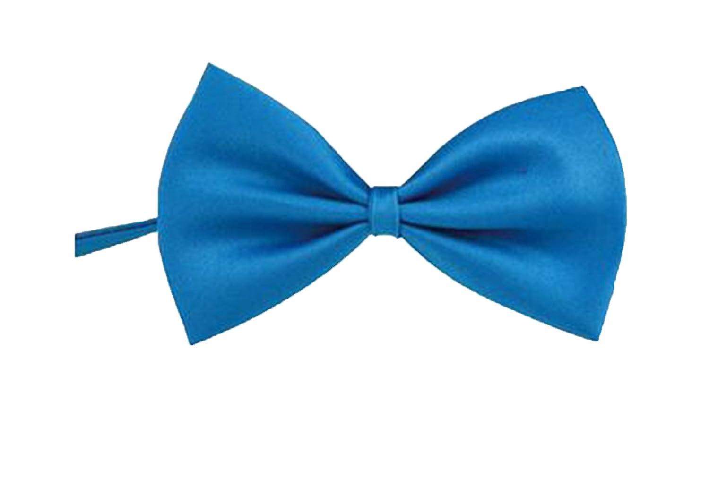 Men Neckties ACCESSORY ボーイズ