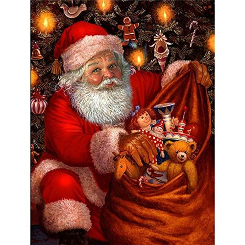 Full Round Drill 5D Diamond Painting Kit Cross Stitch Supply Arts Craft Canvas Wall Decor Santa in The Picture 11.8x15.7 in by Megei