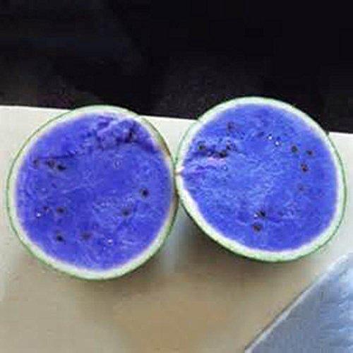 Vente! 30 PCS / Sac Blue Seeds chair de melon d'eau Graines de melon d'eau Bonsai plantes semences non OGM Fruits comestibles vert