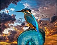 DIYデジタル絵画による数字パッケージ川カワセミ油絵壁画キット着色壁アート画像ギフトフレームレス40×50センチ
