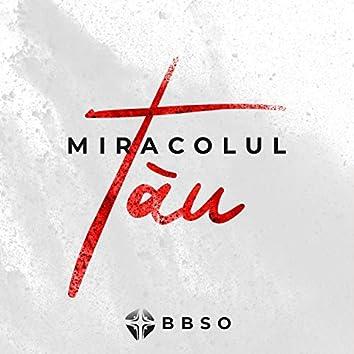 Miracolul Tău