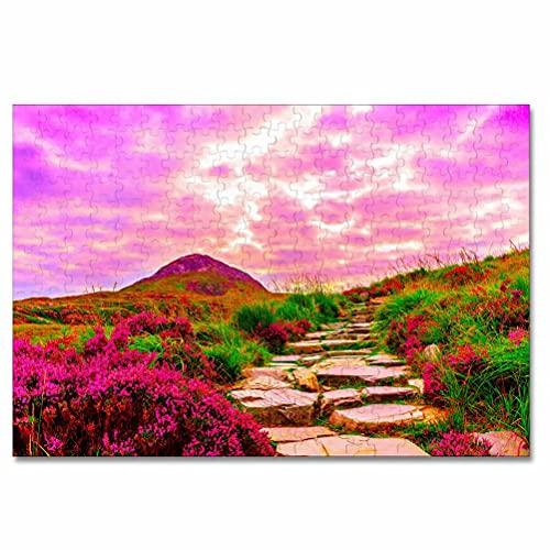 Parque Nacional de Irlanda Connemara Rompecabezas para Adultos, 300 Piezas, Rompecabezas de Madera para niños, Regalo de Viaje, Recuerdo, 16.5 × 12 Pulgadas