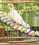 Bird Toys