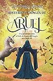 Misterios y magia de Aruej: Una fabulación sobre el Valle de Aruej y del Aragón en el Siglo XI